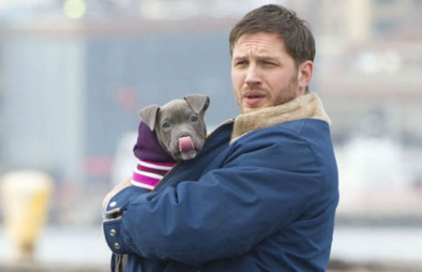 tom-hardy-pit-bull-movie-592x382